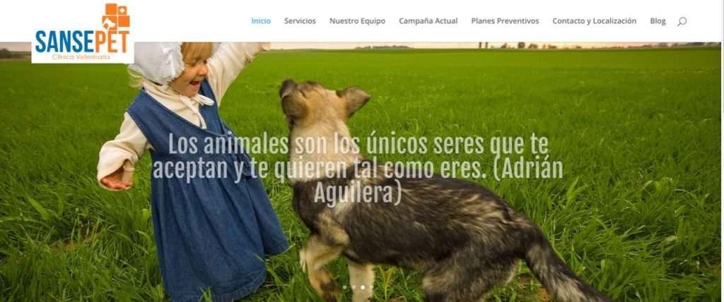 Web Clínica San Sebastián de los Reyes